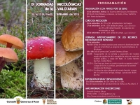 IX Jornadas Micológicas del Valle D'Aran