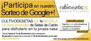 Sorteo Google + Saco productor de Setas de Cardo